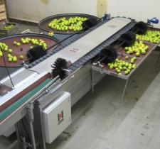 FACHAUX - Meyve derecelendirme makinası